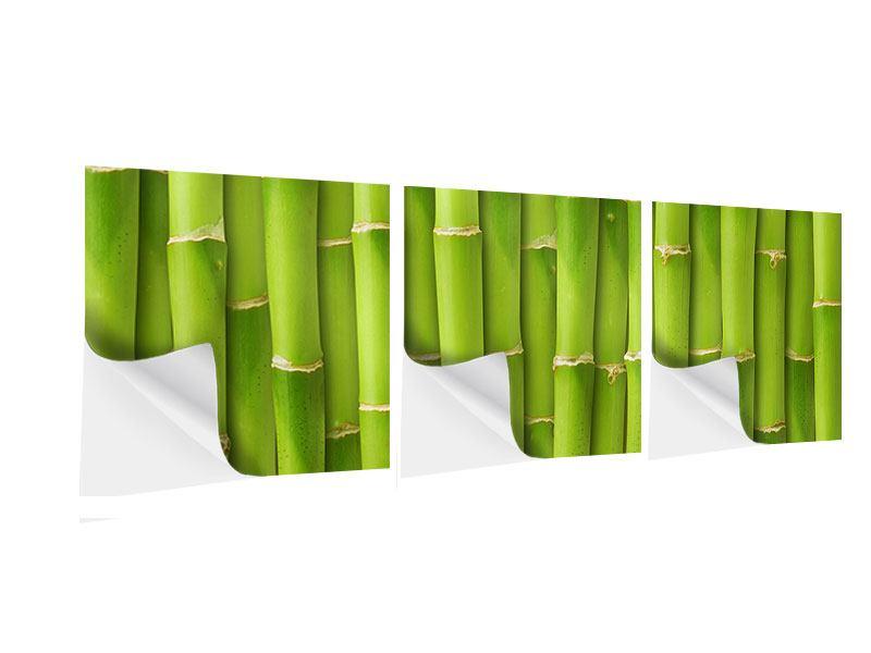Panorama Klebeposter 3-teilig Bambuswand