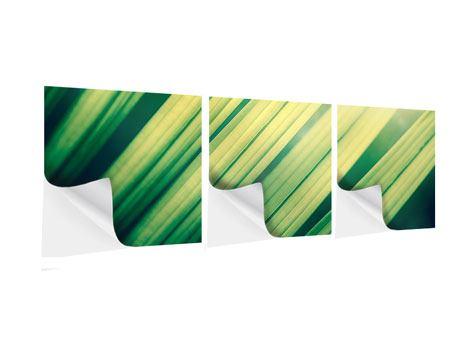 Panorama Klebeposter 3-teilig Beleuchtetes Palmblatt