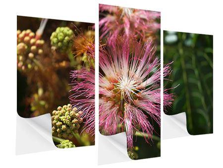 Klebeposter 3-teilig modern Die Regenbaumblüte