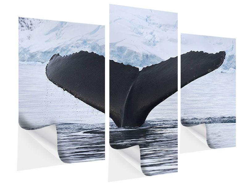 Klebeposter 3-teilig modern Der Buckelwal