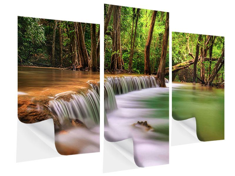 Klebeposter 3-teilig modern Deep Forest
