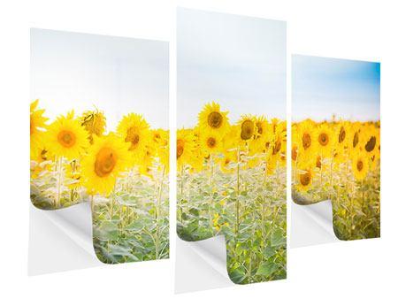 Klebeposter 3-teilig modern Im Sonnenblumenfeld