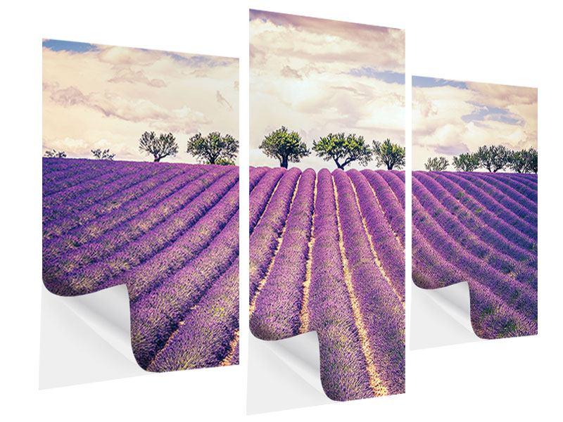 Klebeposter 3-teilig modern Das Lavendelfeld