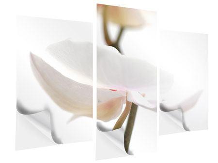 Klebeposter 3-teilig modern XXL Orchideenblüte