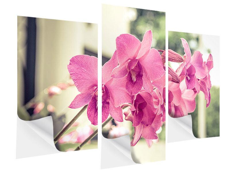 Klebeposter 3-teilig modern Ein Fensterplatz für die Orchideen