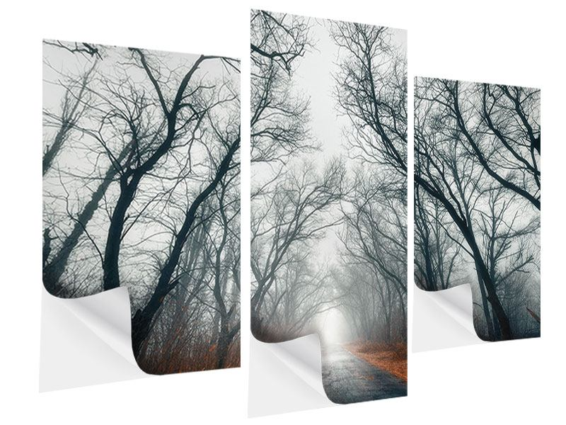 Klebeposter 3-teilig modern Mysteriöse Stimmung im Wald
