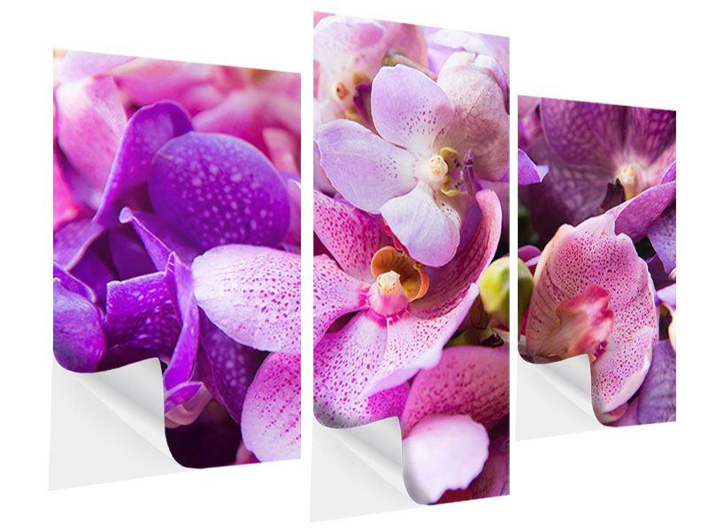 Klebeposter 3-teilig modern Im Orchideenparadies