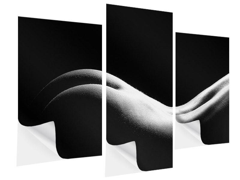 Klebeposter 3-teilig modern Nude