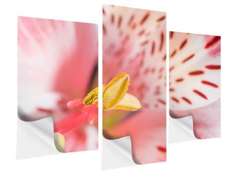 Klebeposter 3-teilig modern Der Lilienstempel