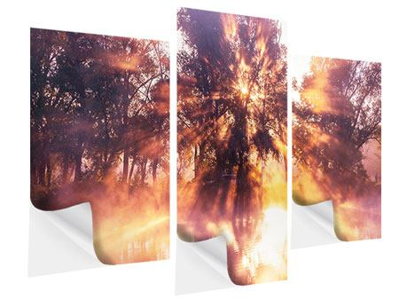 Klebeposter 3-teilig modern Die Waldspiegelung