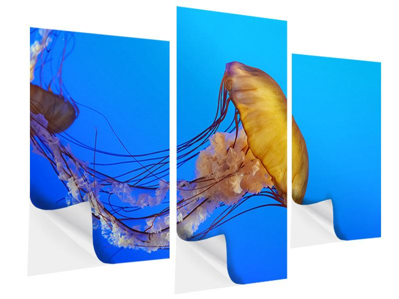 Klebeposter 3-teilig modern Medusa