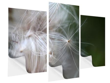 Klebeposter 3-teilig modern Close up Blütenfasern