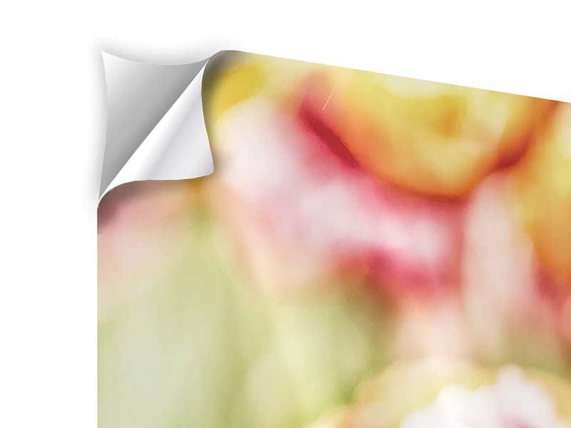 Klebeposter 3-teilig modern Die Schönheit der Tulpe