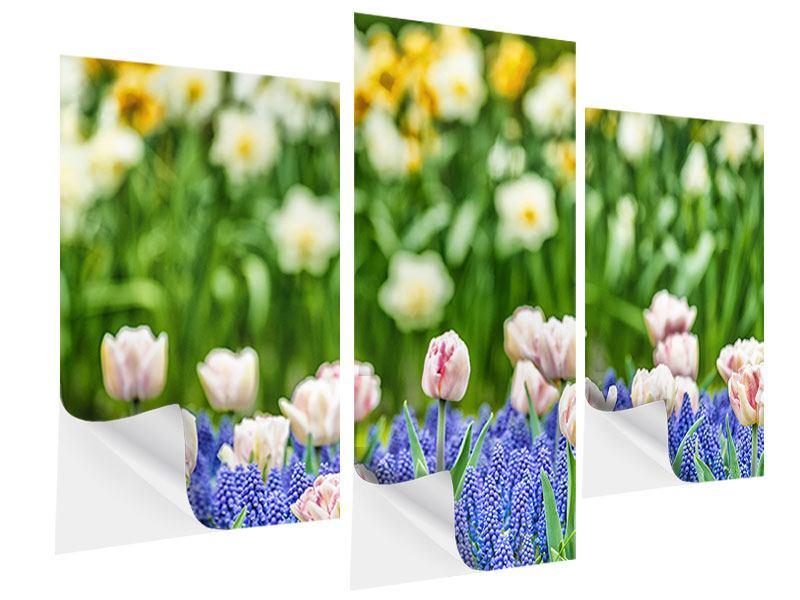 Klebeposter 3-teilig modern Ein Garten mit Tulpen