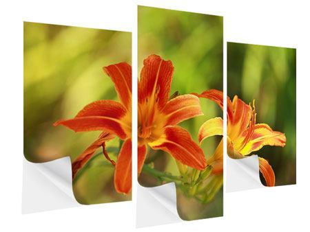 Klebeposter 3-teilig modern Natural Lilien