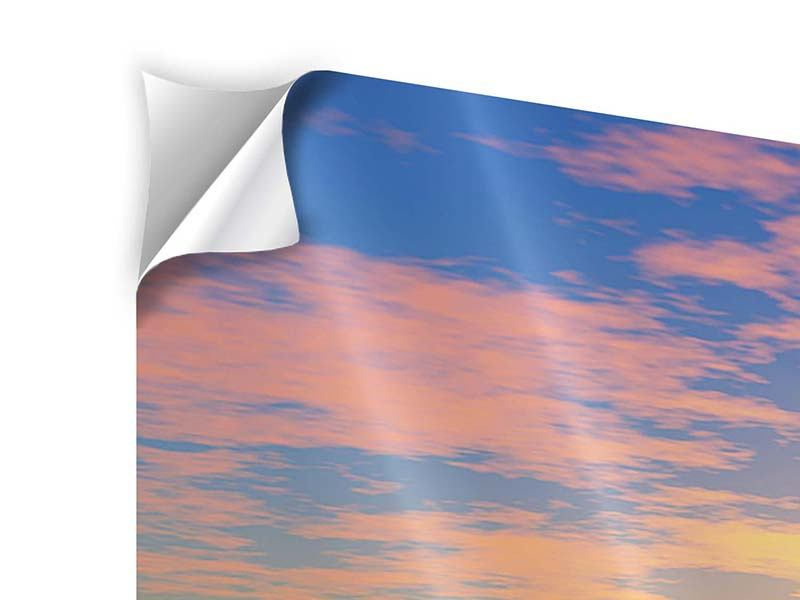 Klebeposter 3-teilig modern Blumenpanorama bei Sonnenuntergang