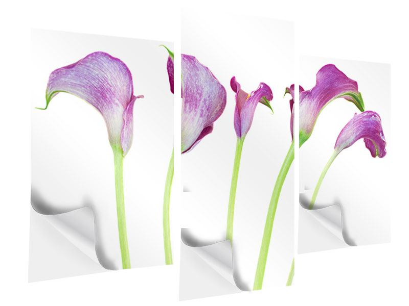 Klebeposter 3-teilig modern Callas in Lila