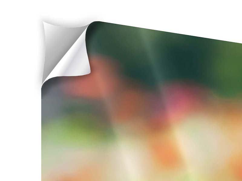 Klebeposter 3-teilig modern Im Blumengarten