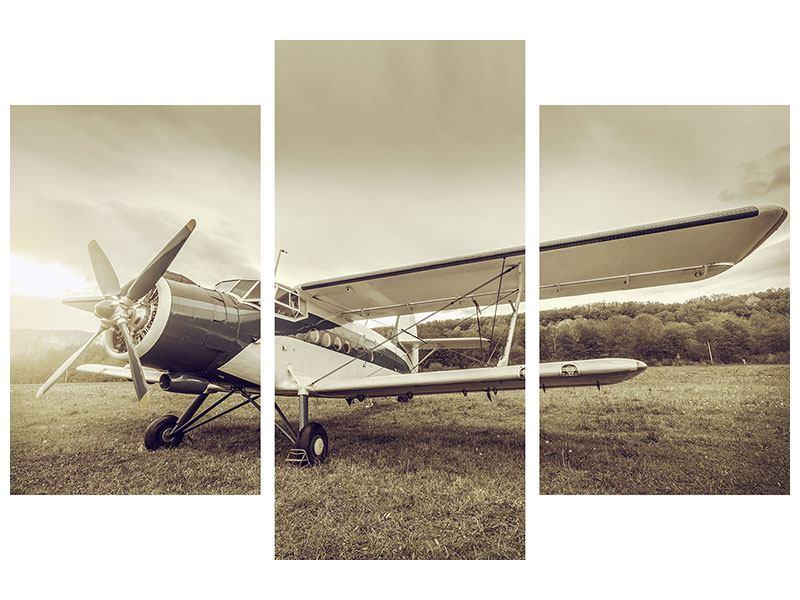 Klebeposter 3-teilig modern Nostalgisches Flugzeug im Retrostyle