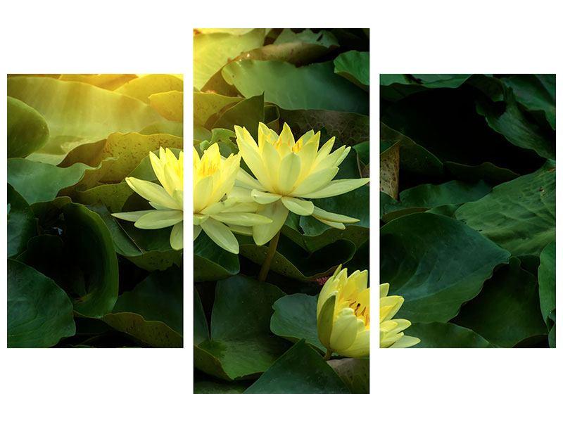 Klebeposter 3-teilig modern Wilde Lotus