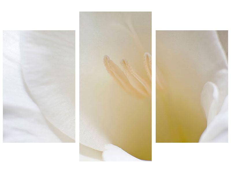 Klebeposter 3-teilig modern In einer Blüte