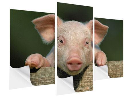 Klebeposter 3-teilig modern Schweinchen Namens Babe