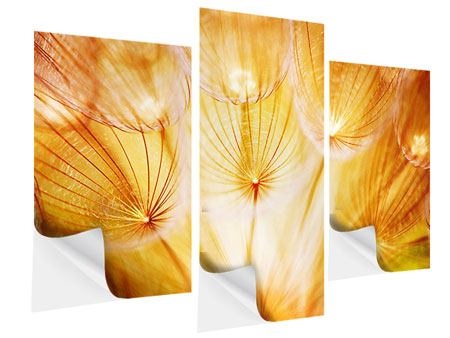 Modern 3 Piece Self-Adhesive Poster Close Up Dandelion In Light