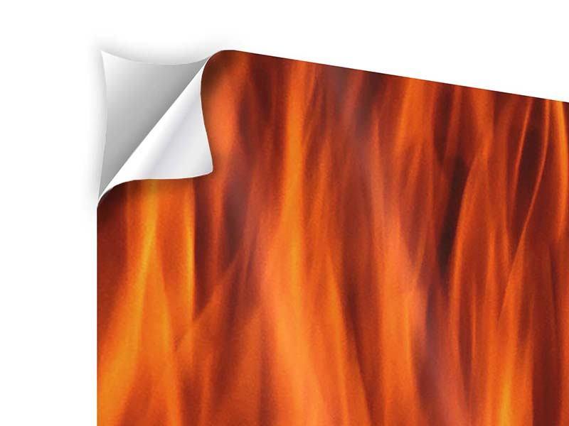 Klebeposter 3-teilig modern Feuer Close Up
