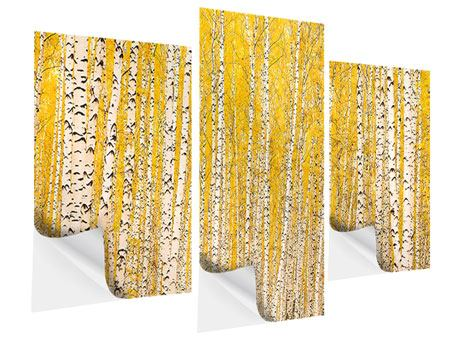 Klebeposter 3-teilig modern Der Birkenwald im Herbst