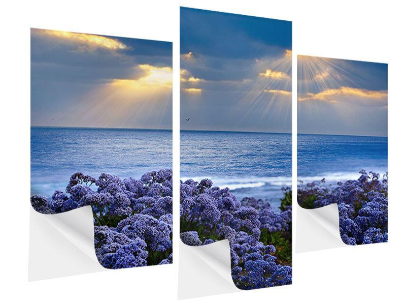 Klebeposter 3-teilig modern Der Lavendel und das Meer