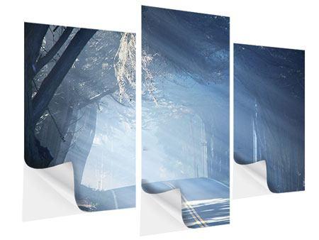 Klebeposter 3-teilig modern Lichtdurchflutete Baumallee