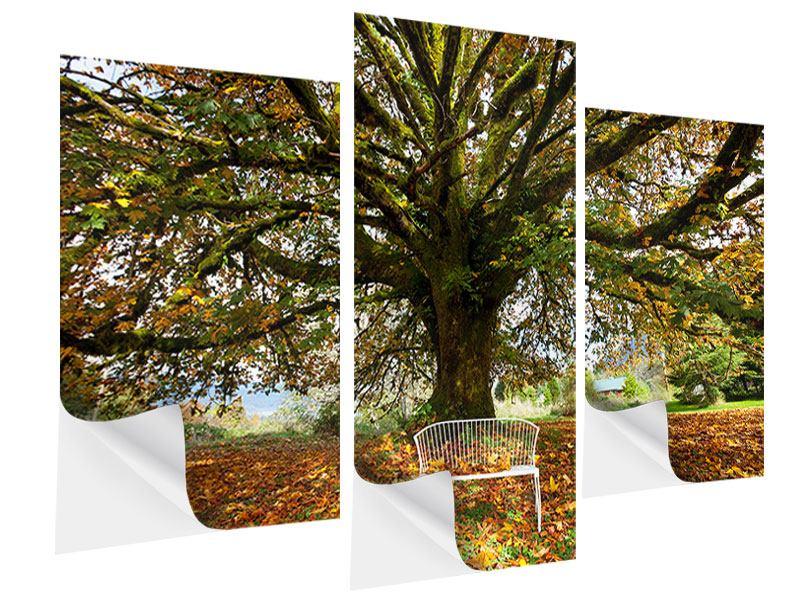 Klebeposter 3-teilig modern Mein Lieblingsbaum