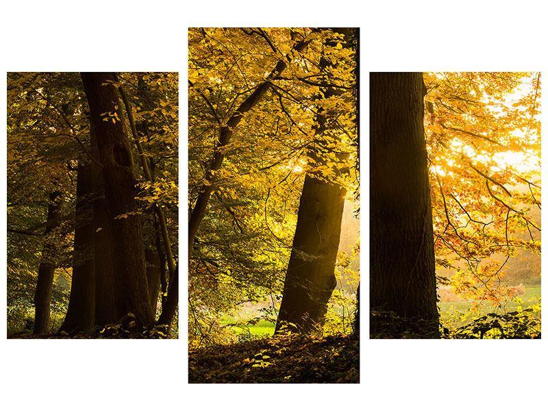 Klebeposter 3-teilig modern Herbstlaub