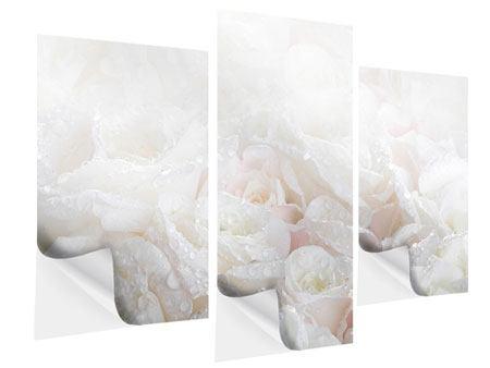 Klebeposter 3-teilig modern Weisse Rosen im Morgentau