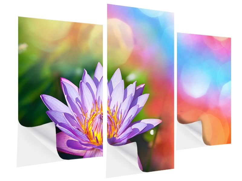 Klebeposter 3-teilig modern Colored Lotus