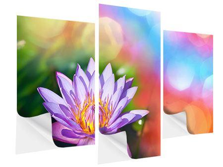 Klebeposter 3-teilig modern Colored Lotus