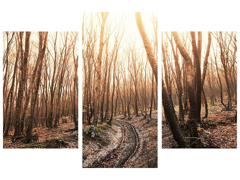 Klebeposter 3-teilig modern Der kahle Wald