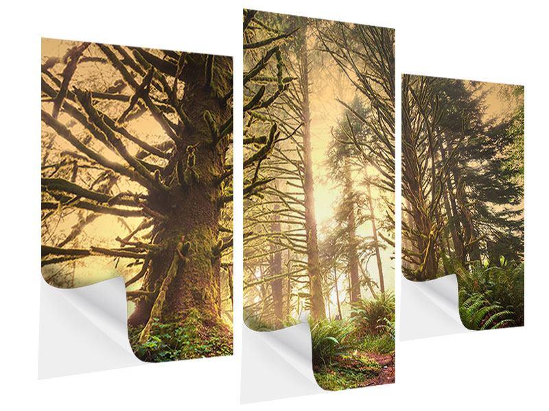 Klebeposter 3-teilig modern Sonnenuntergang im Dschungel