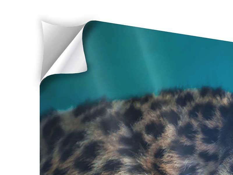 Klebeposter 3-teilig modern Leopard XL