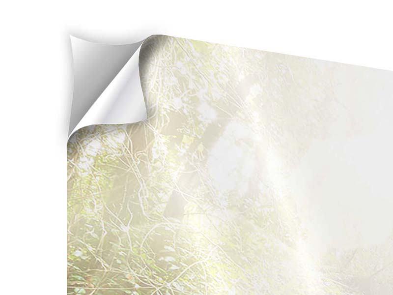 Klebeposter 3-teilig modern Die grüne Lagune