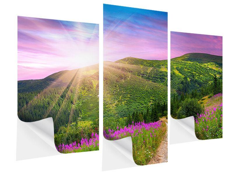 Klebeposter 3-teilig modern Eine Sommerlandschaft bei Sonnenaufgang