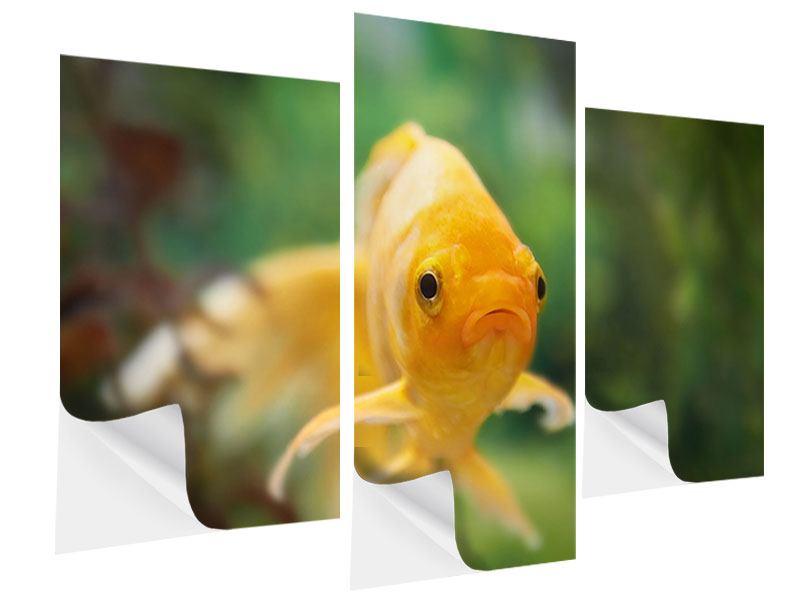 Klebeposter 3-teilig modern Der Fisch