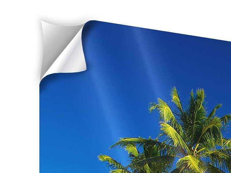 Klebeposter 3-teilig modern Aloha