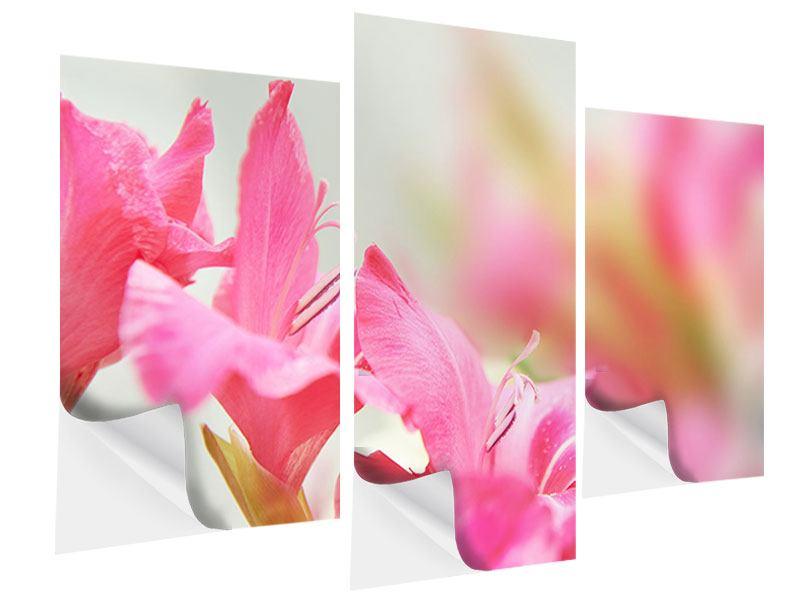 Klebeposter 3-teilig modern Gladiolen