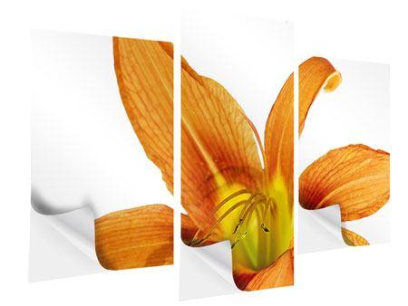 Klebeposter 3-teilig modern Die Tiger-Lilie