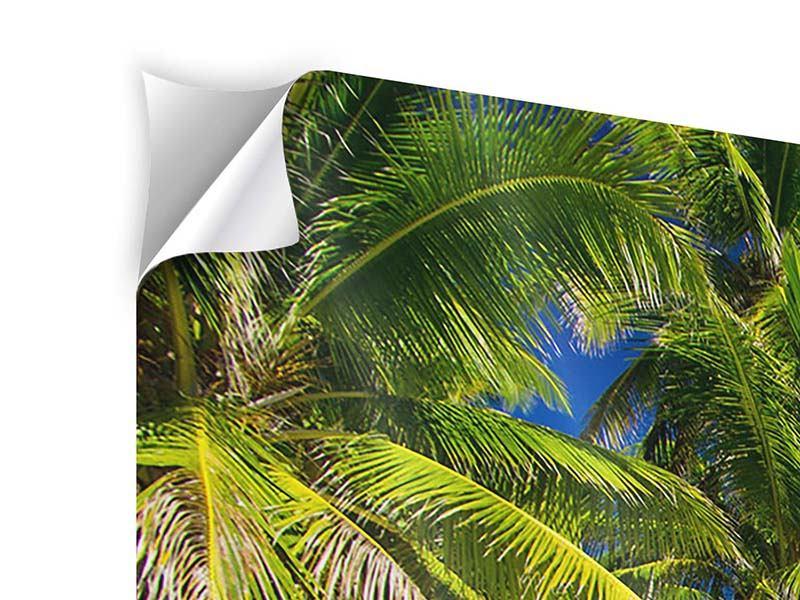 Klebeposter 3-teilig modern Die einsame Insel