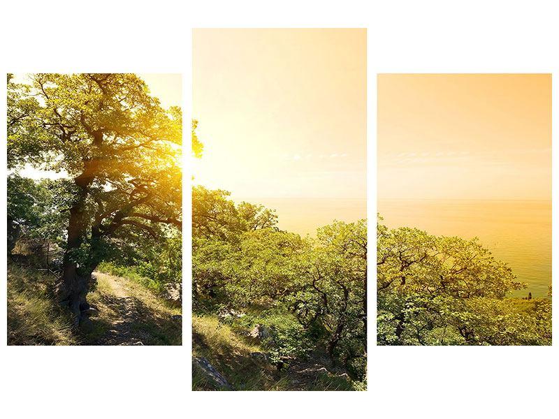 Klebeposter 3-teilig modern Sonnenuntergang in der Natur