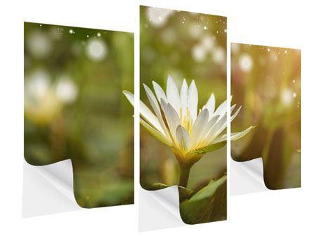 Klebeposter 3-teilig modern Lilien-Lichtspiel