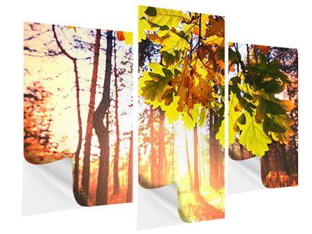 Klebeposter 3-teilig modern Herbst