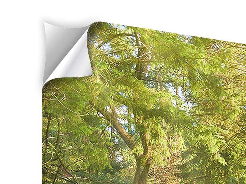 Klebeposter 3-teilig modern Im Park
